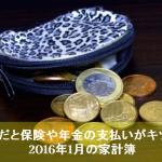 2016年1月のんちゃん家の家計簿まとめ