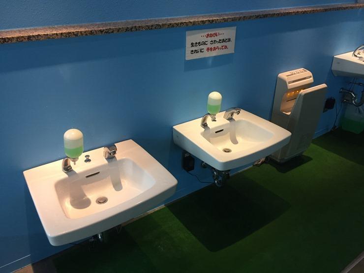 浅虫水族館のタッチコーナーの手洗い場